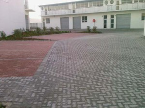 Cement Pavers