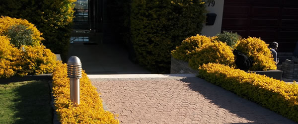 residential_paving